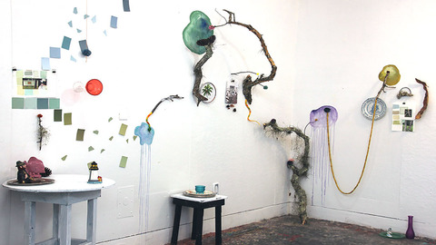 Mollie Murphy This is Florida installation (paint color samples, branches, lichen, thrift store objects, watercolor, yarn)