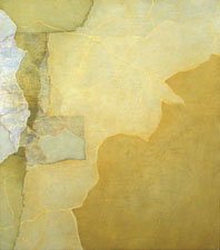 MOLLY RAUSCH Maps Oil, wax, collage on plywood