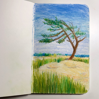 Monika Maniecki Sketchbook