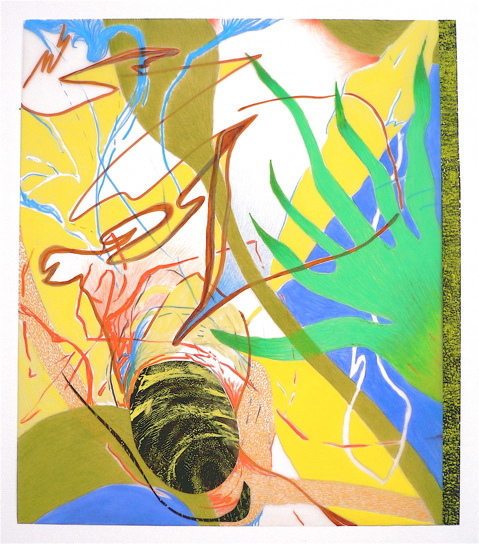 Nanette Carter  2006 - 2012 oils, color pencil, magic marker, Mylar