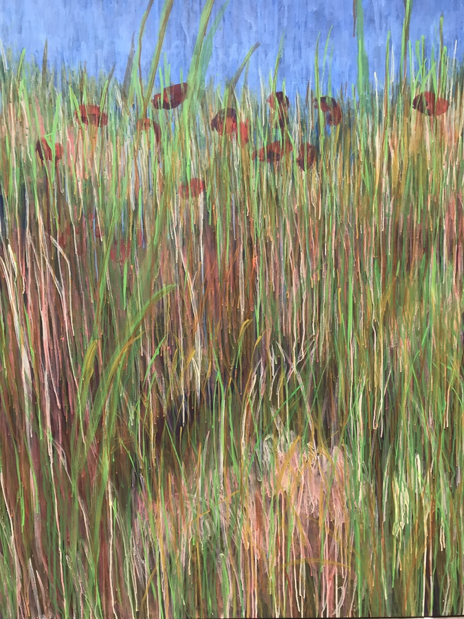 Paintings Poppies to Pembroke