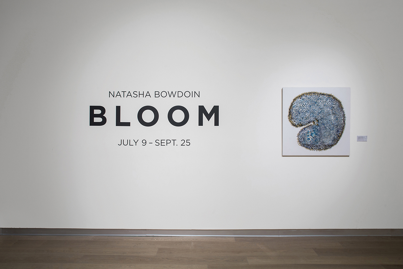 Natasha Bowdoin Bloom 2015