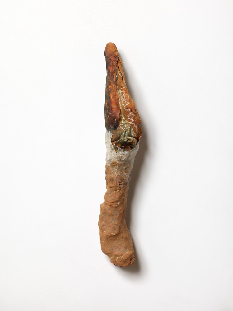 Nicola Ginzel  Selected Transformed Objects entrails, clothing remnants, frottage remnant, wax