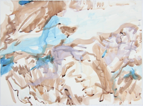Nicole Ouellette Moving at a Glacial Pace Ink and gouache on paper