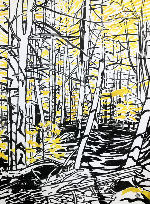 Niels Burger Black and Yellow Ink on paper