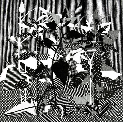 "Drawings ""Night Garden #2"""