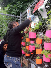 Oasa DuVerney Brooklyn Hi-Art Machine plastic bottles, dirt, plants, tape, zip ties, fence