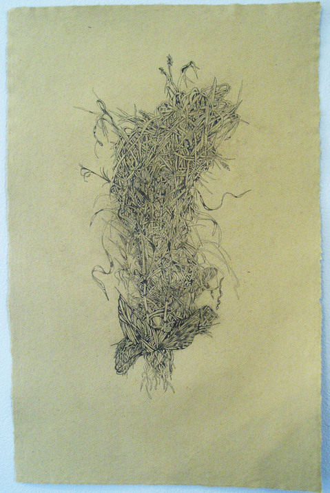 Drawings Meadow Muse #3