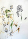 Drawings graphite, soil and plant pigment