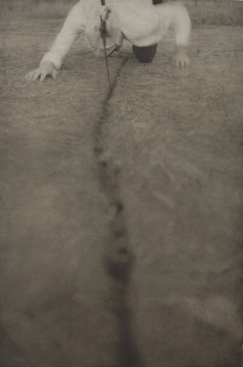 Robert and Shana ParkeHarrison Early Works