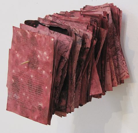 Florilegium, 2016, vintage book dyed with cochineal insect dye, bamboo skewer, 7x5x13""