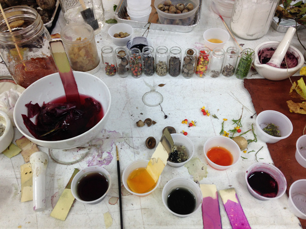 dyes and pigments  dyes and pigments