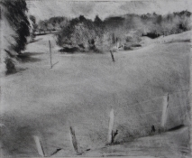 Peter Charlap Drawings charcoal