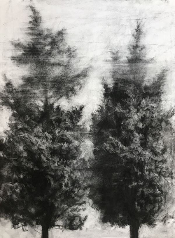 Peter Roux landscape charcoal on paper