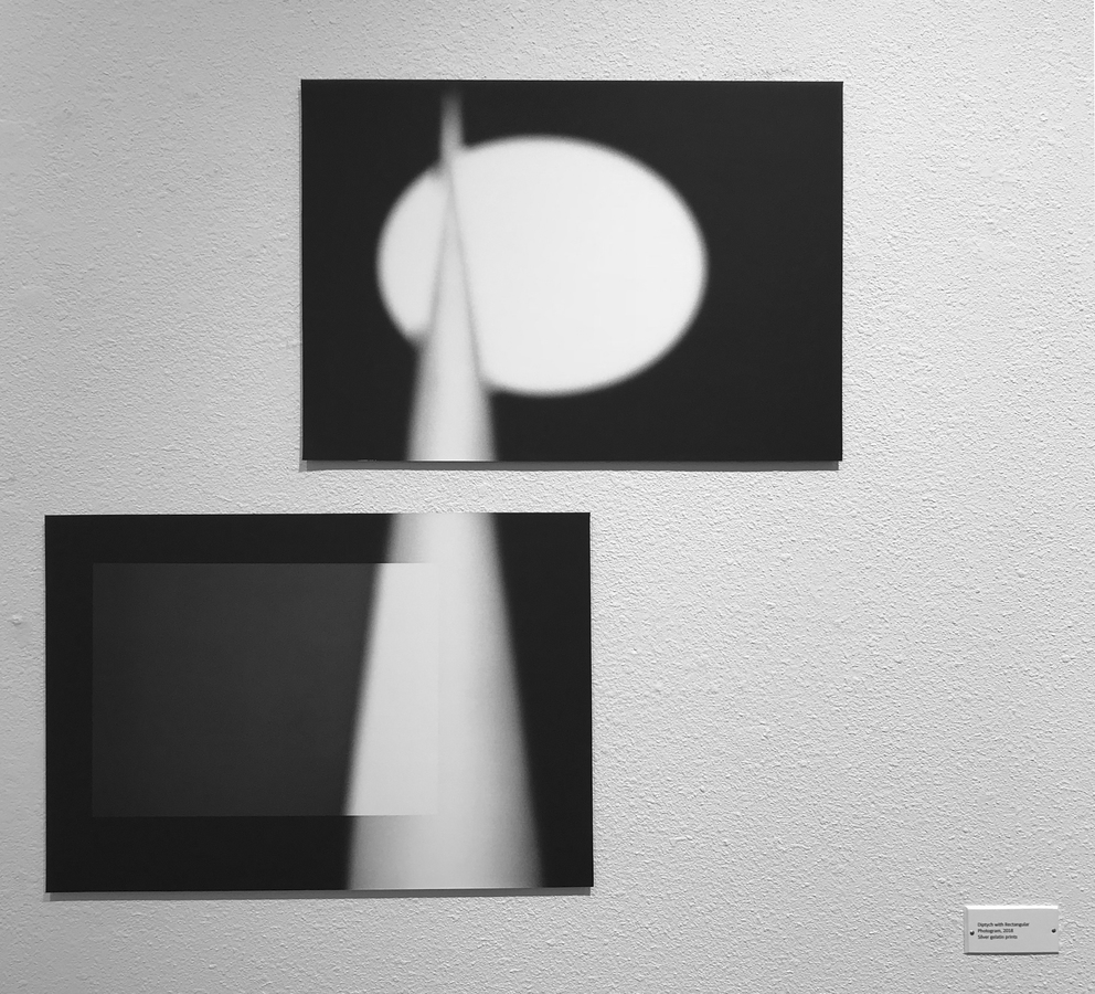 Recent Work: 2017-2018 Diptych with rectangular photogram - installation view