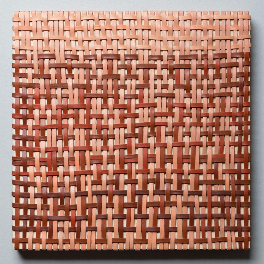 Pilar Agüero-Esparza Color Perception Untitled