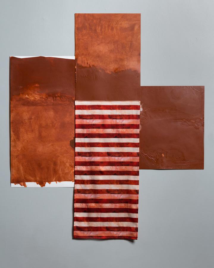 Pilar Agüero-Esparza Color Perception Skin, Territories, Flag: burnt sienna