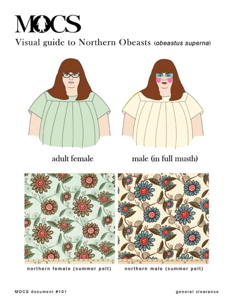 MOCS Visual Guide to Northern Obeasts