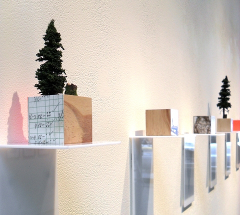 Renee Couture It May Take Longer wood, archival digital prints, flagging tape, hand-made trees
