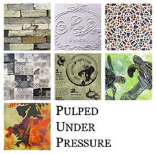 Reni Gower Pulped Under Pressure: the Art of Handmade Paper Handmade Paper, Papercuts, Installations