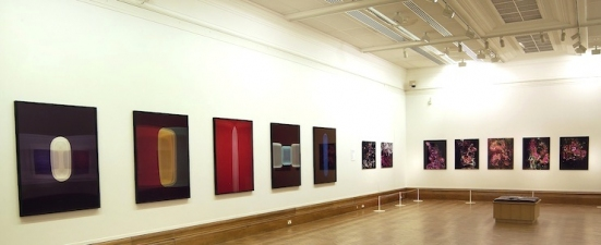 RICHARD CALDICOTT Optic Nerve, Abstract Colour Photography, Ipswich Museum, 2003
