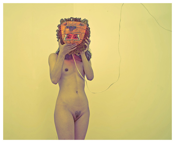 RICHARD MARK DOBSON the lioness NOT FOR SALE