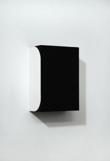 Richard Roth Paintings  2006 - 2011 Flashe on Birch plywood