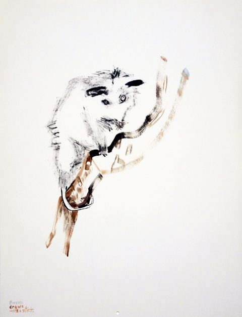 Works on paper  2000 to Present Possum drawn with a stick
