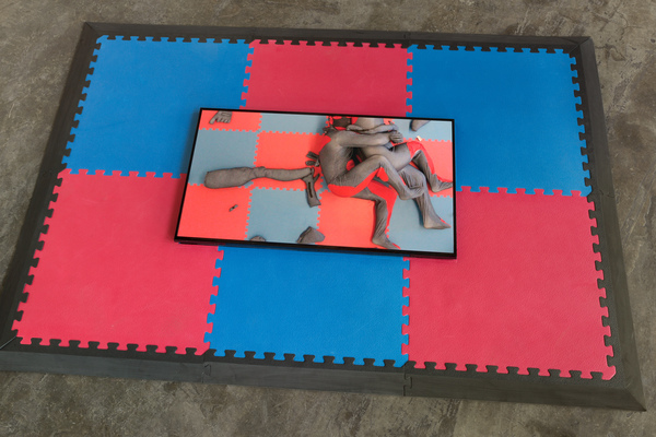 Rose Nestler The Wrestlers 2017 single channel video - screen mounted into MMA mat