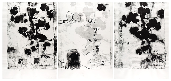 Roxanne Faber Savage Spine & Clover/monoprints on paper Paper Lithograph with charcoal