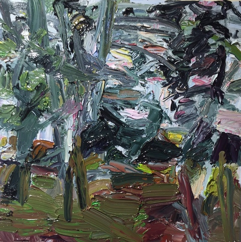 Roz Sommer Landscapes oil on board