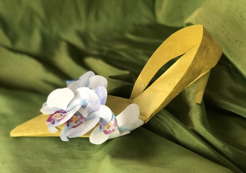 Paper Shoes Dendrobium