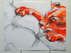 RUNE OLSEN Killer Cats and Asses Acrylic and graphite on Vellum