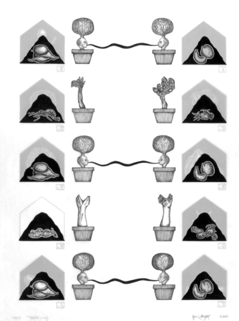 archive house and garden