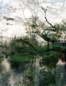 SALLY APFELBAUM  GIVERNY l, PHOTOGRAPHS Archival Pigment Print (Photograph)