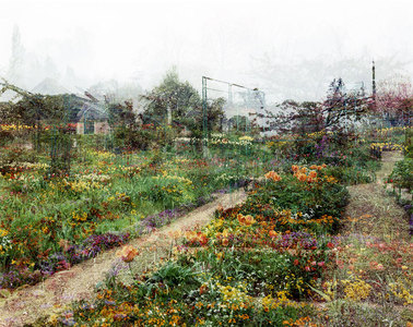 SALLY APFELBAUM  GIVERNY l, PHOTOGRAPHS Archival Pigment Print