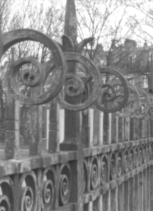 Photography Montmartre Fence