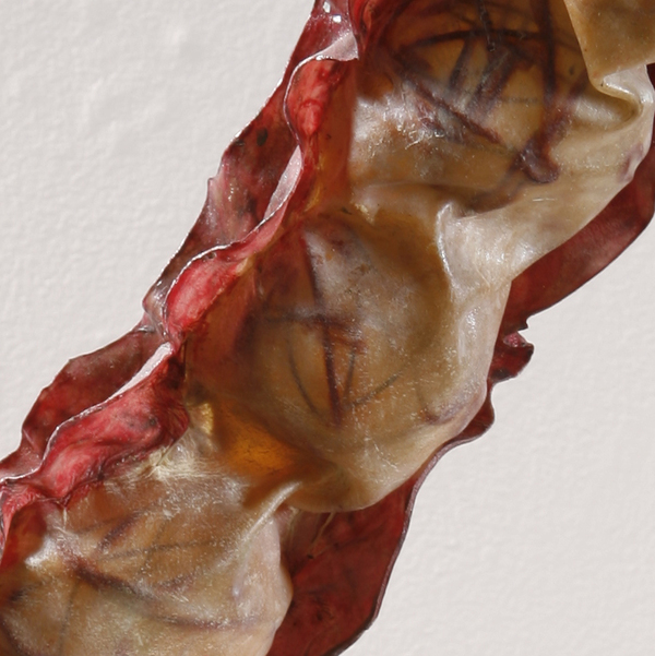 Sculpture Ovary, detail