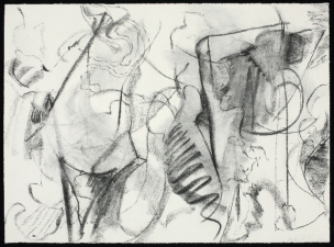 SANDRA K. MEAGHER <i>Conumble</i> Series charcoal on paper