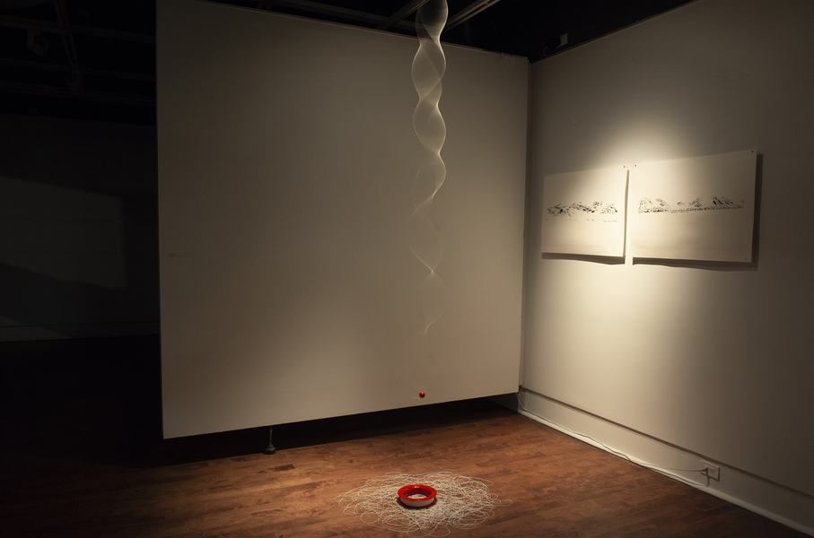 string theory: possible probabilities String Theory: Warren G. Flowers Gallery