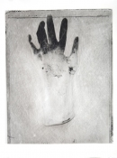 Sandy Johanson Gloves Photograph