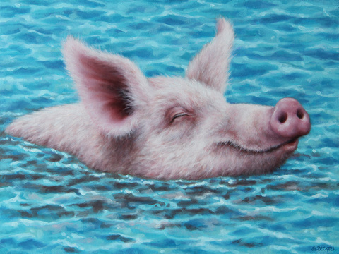 Sarah Becktel  Swimming Pigs Oil on Canvas Wrapped Panel
