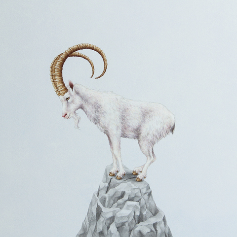 Sarah Becktel  Extinction Colored Pencil and Watermedia