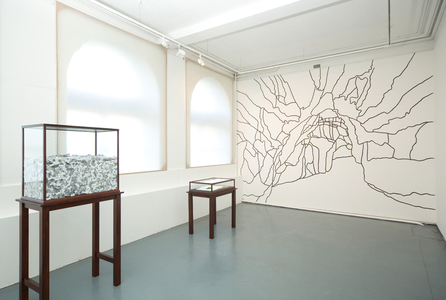 I thought I dreamed of you / installation view / room 1