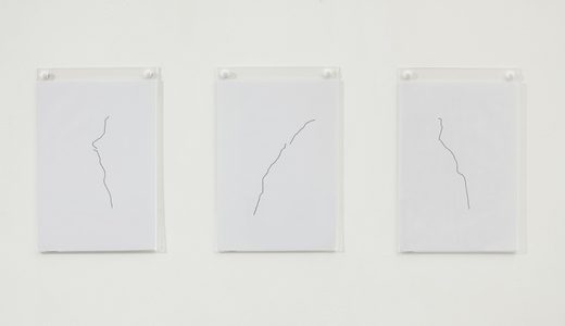 Sarah Iremonger I thought I dreamed of you 2009-10 Pen on paper, wall mounted display holders