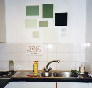 Sarah Iremonger from effect to ideology and back again 2000 Household paint on various boards