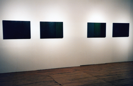 Sarah Iremonger Paintings 1994-97 Oil on canvas on board (all)