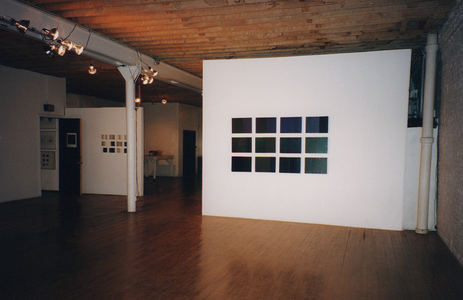 Sarah Iremonger Paintings 1994-97