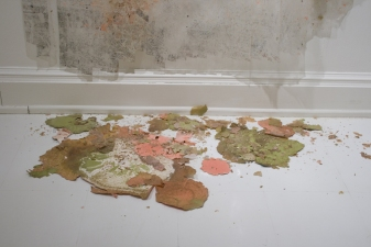 SARA HUBBS As Is  (MFA Exhibition) tape, acrylic paint, Stabilizer natural soil binder