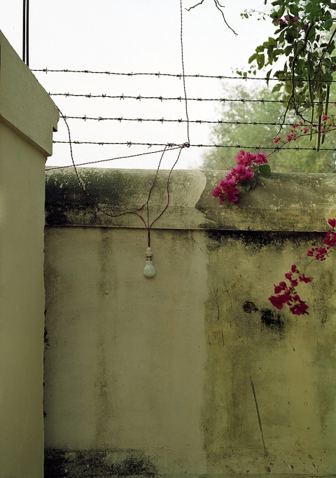 <b>The Searchers (Part I)</b>  Wall, Root Institute (Bodhgaya, India)